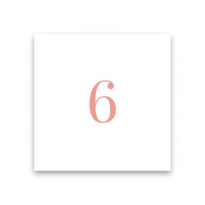 bordsnummer till bröllop blush white